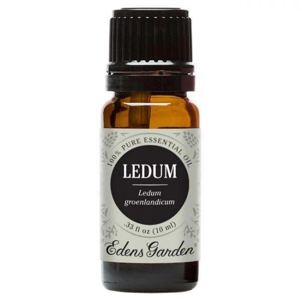 10 ML Huile Essentielle de Ledum