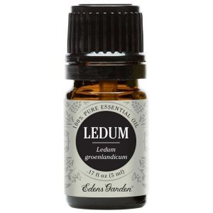 5 ML Huile Essentielle de Ledum