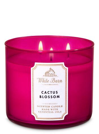 Bougie Parfumée aux Fleurs de Cactus