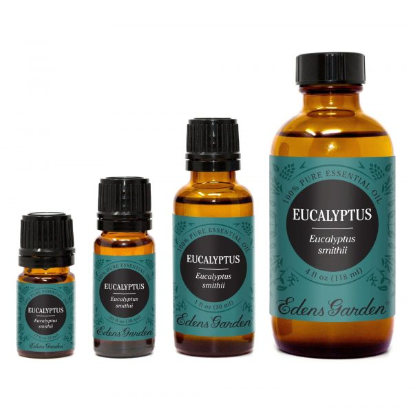 Huile Essentielle d'Eucalyptus Smithii