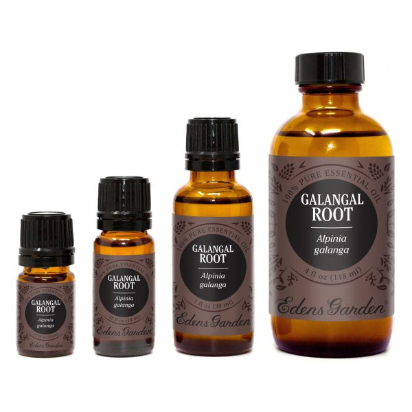 Huile Essentielle de Racine de Galanga